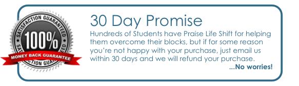 LS-Promise
